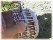Atelier Runtamtam Percussions