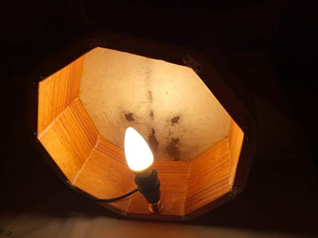 Lampe loup 9 cote 5