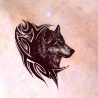 Loup stylise